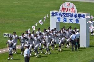第97回全国高校野球選手権大会 結果